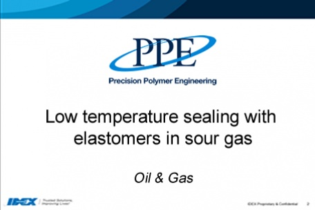 Webinar: Low temperature sealing with elastomers in sour gas